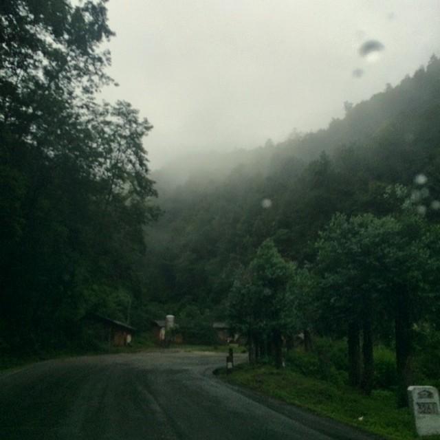 空山新雨后