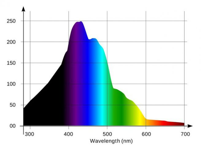 月光灯对珊瑚的影响