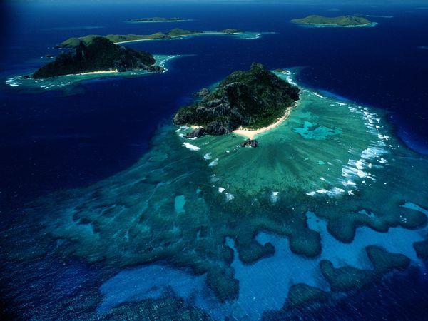 关于珊瑚礁的事实